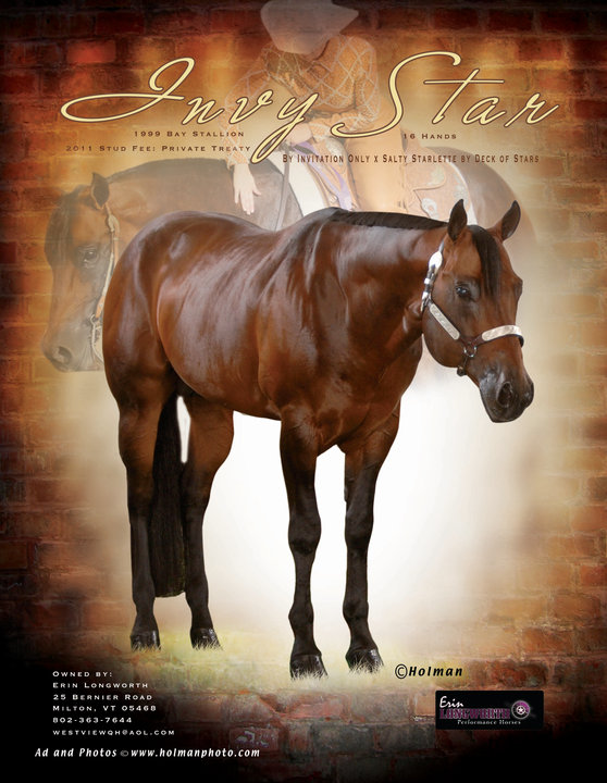 Invy star stallion by invitation only x salty starlette by deck of stars stopboris Choice Image