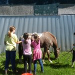 Bathing Buzz during pony camp